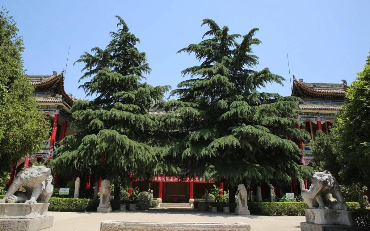 临潼区博物馆