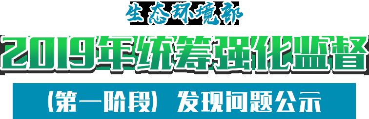 2019年统筹强化监督(第一阶段)发现问题公示