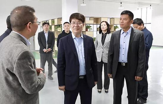 岳华峰调研西咸新区稳增长促投资工作(图)