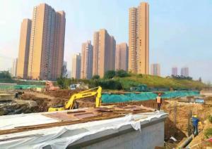 【河长履职】长安区委书记王青峰调研皂河复兴工程进展