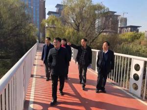 西安市灞桥区区长苗志忠调研灞河清淤工作