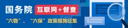 国务院互联网+督查——六稳、六保(422)