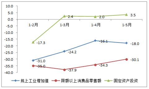 2020年1-5月主要经济指标图示