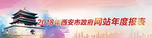 2018年西安市政府网站年度报表