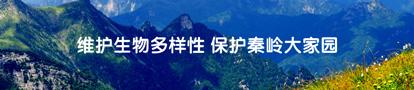 维护生物多样性 保护秦岭大家园